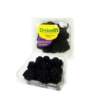 100-drisclolls-blackberry-170-gr